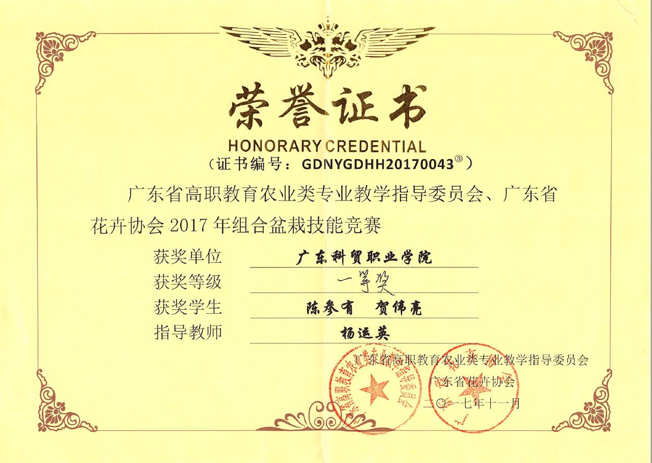 2017年省组合盆栽技能竞赛-一等奖 陈参有、贺伟亮